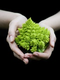 Handful of Romanesco
