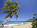Tres Palmitas Beach