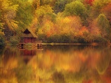 Wooden Cabin on Lake in Autumn