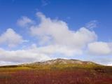 Mountain Range in Tundra Landscape