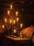 Wine Cellar in Bavarian Castle