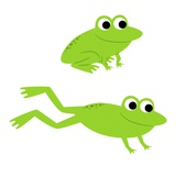 Two Frogs Leaping
