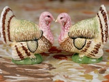 Turkey Saltcellar and Pepper Shaker Set