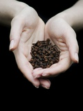 Handful of Cloves