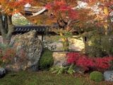 Autumn Foliage in Japanese Garden
