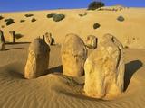 Limestone Pillars in Australian Desert