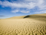 Sand Dunes in the Great Sand Hills Ecological Reserve Near Sceptre  Saskatchewan  Canada