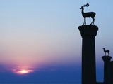Stag Column