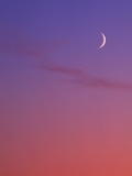 Evening Sky in Magenta with Crescent Moon - Background  Canada
