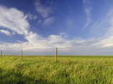 Active Prairie Sky and Farm Fenceline West of Calgary  Alberta  Canada