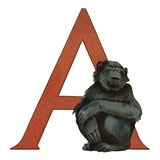 A Is For Arangatain