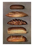 Illustration of five types of bread loaves