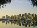 Downtown Skyline from Stanley Park  Vancouver  British Columbia  Canada