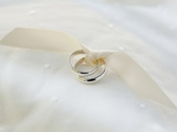 Two wedding rings tied with ribbon