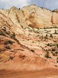 Zion Canyon  Zion National Park  Utah  USA