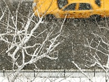 Yellow cab on Park Avenue in a snowstorm