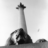 Nelson's Column with Lion Sculpture