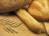 Bread and Wheat  Winnipeg  Manitoba  Canada