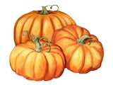 A Picture of Three Pumpkins
