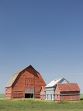 Red Barns in the Middle of a Large Flat Field in the Prairie Land of Southern Saskatchewan  Canada