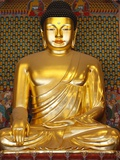 Statue of Sakyamuni Buddha in Main Hall of Jogyesa Temple