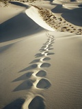 Footprints in White Sand Dunes