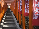 Line of torii gates at Hie Shrine