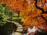 Autumn Colors in Butchart Gardens  Victoria  Vancouver Island  British Columbia  Canada