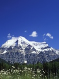Mount Robson  3954 M  Highest Peak in Canadian Rockies  British Columbia  Canada