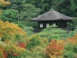 Jisho Temple- Silver Pavilion