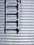 Ladder on Silo