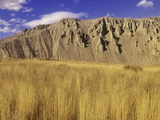 Grasslands at Farwell Canyon  British Columbia  Canada
