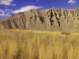 Grasslands at Farwell Canyon  British Columbia  Canada