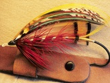 Atlantic Salmon Fly on Hat Brim  British Columbia  Canada