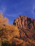 USA  Utah  Zion National Park  Cliffs Along Virgin River