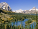 Mary Lakes and Autumn Larches  Lake O'Hara Region  Yoho National Park  British Columbia  Canada