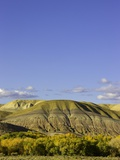 Sandstone buttes and cottonwoods in fall in Wyoming