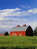 Old Red Barn in Field