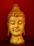 Buddha head