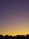 Sunset in the Needles District in Canyonlands National Park Papier Photo par John Eastcott & Yva Momatiuk