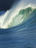Wave  Waimea  North Shore  Hawaii