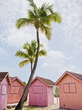 Pink tropical bungalows