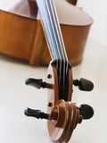 Close up of cello head