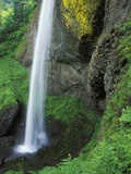 USA  Oregon  Columbia River Gorge Area  Scenic Waterfalls  Latourelle Falls