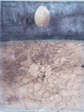 Egg Floating / Abstract Surface