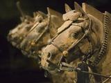 Terra cotta horse chariot  Emperor Qin Shihuangdi's Tomb  Xian  Shaanxi  China
