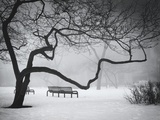 Park Benches In The Snow In Chicago