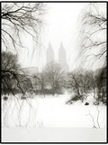 Central Park Snow