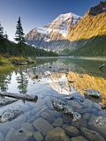 Mount Edith Cavell Reflected in Cavell Lake in Jasper National Park  Alberta  Canada