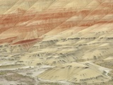 The Painted Hills at the John Day Fossil Beds National Monument  Oregon  USA